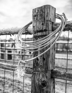 On a Fence Post By the Roping Arena, a Lariat is Looped. Modern Cowboys Rely on Work Gear Like this to Wrangle Cattle.