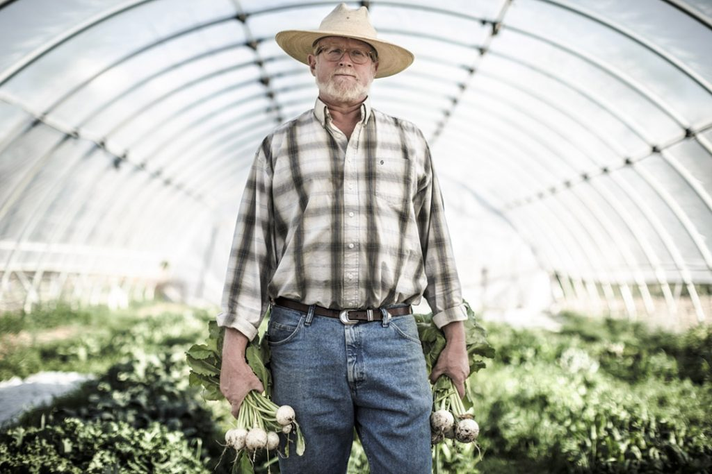 An Organic Farmer In His Greenhouse Farming For Farm-to-Table Dinner. Ranch organic