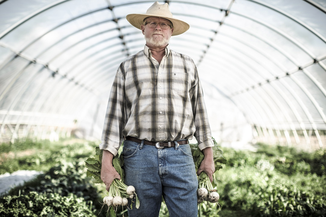 An Organic Farmer In His Greenhouse Farming For Farm-to-Table Dinner. Ranch organic