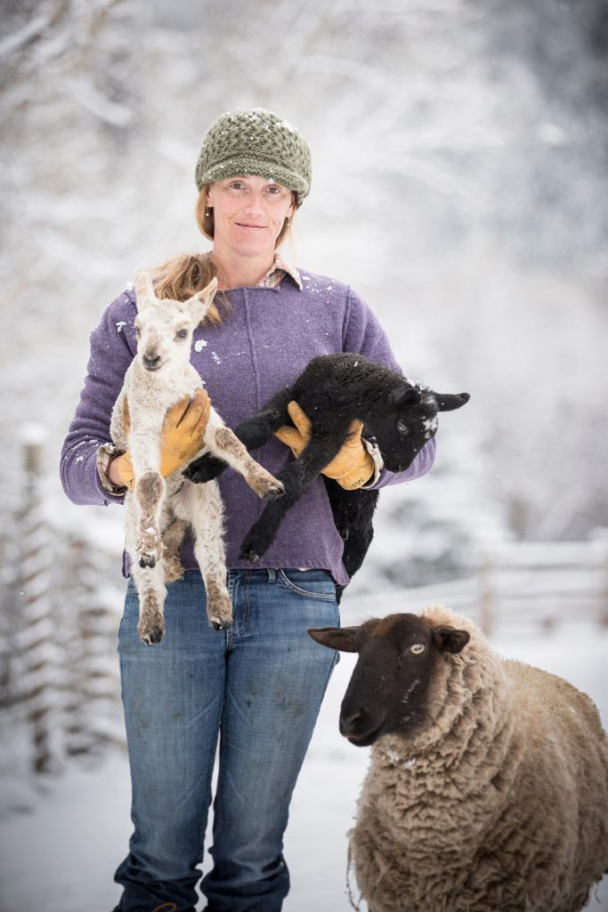 A Female Rancher Holds Young Spring Lambs On Organic Ranch In Colorado