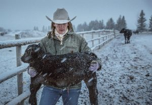 A Female Rancher Carries Calf In A Muddy Field On Her Ranch In Colorado