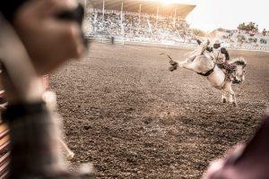 Rodeo Athlete On Bareback Horse
