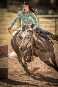 Woman Riding Horse During Barrel Racing Rodeo.