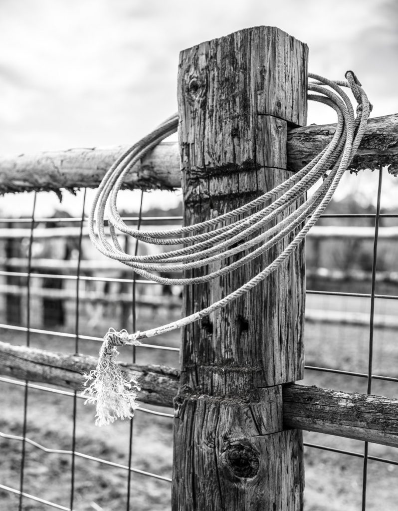 Cowboy Lasso On A Fence Post