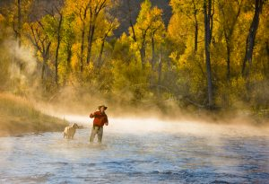 With Fall Gold Cottonwoods and Mist Rising from the Gold Medal Waters of the Roaring Fork River, this Photograph is Iconic of a Passion for Fly Fishing.