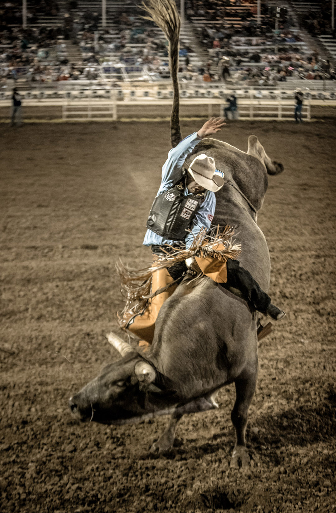 Rodeo Athlete Riding Bull At Red Bluff R