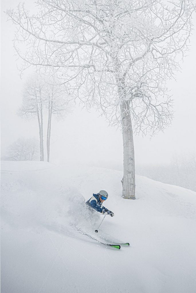 Skier sends up a spray of snow in front of a white tree